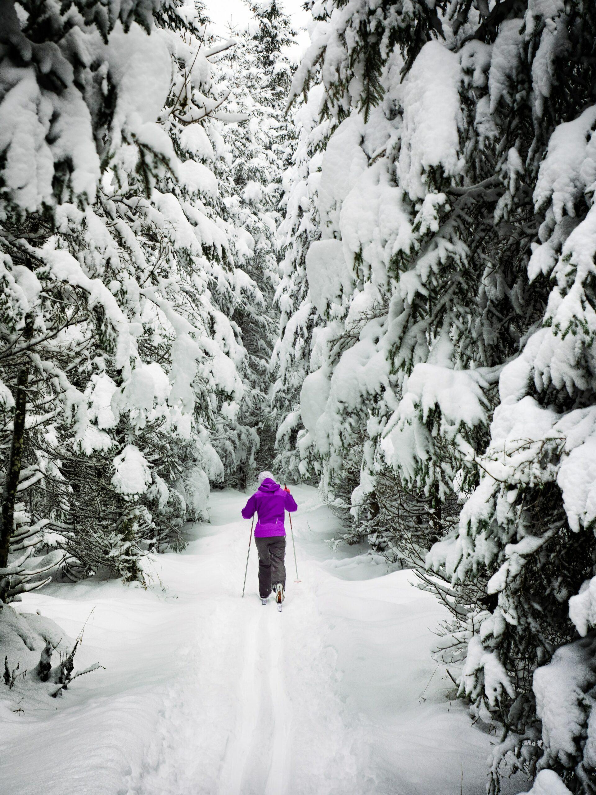 Sportovat se dá i v zimě. Sport v každém ročním období!